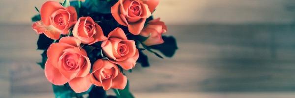 kwiaty11