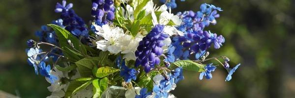 kwiaty_12