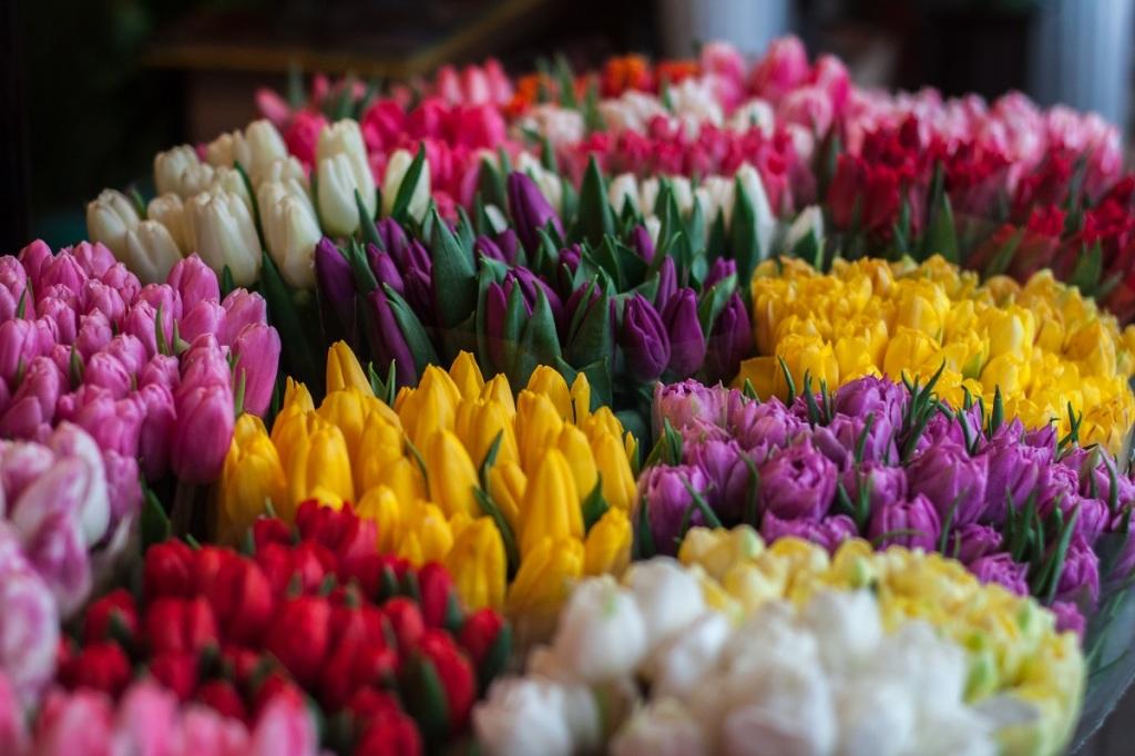 kwiaty_dziekujemy